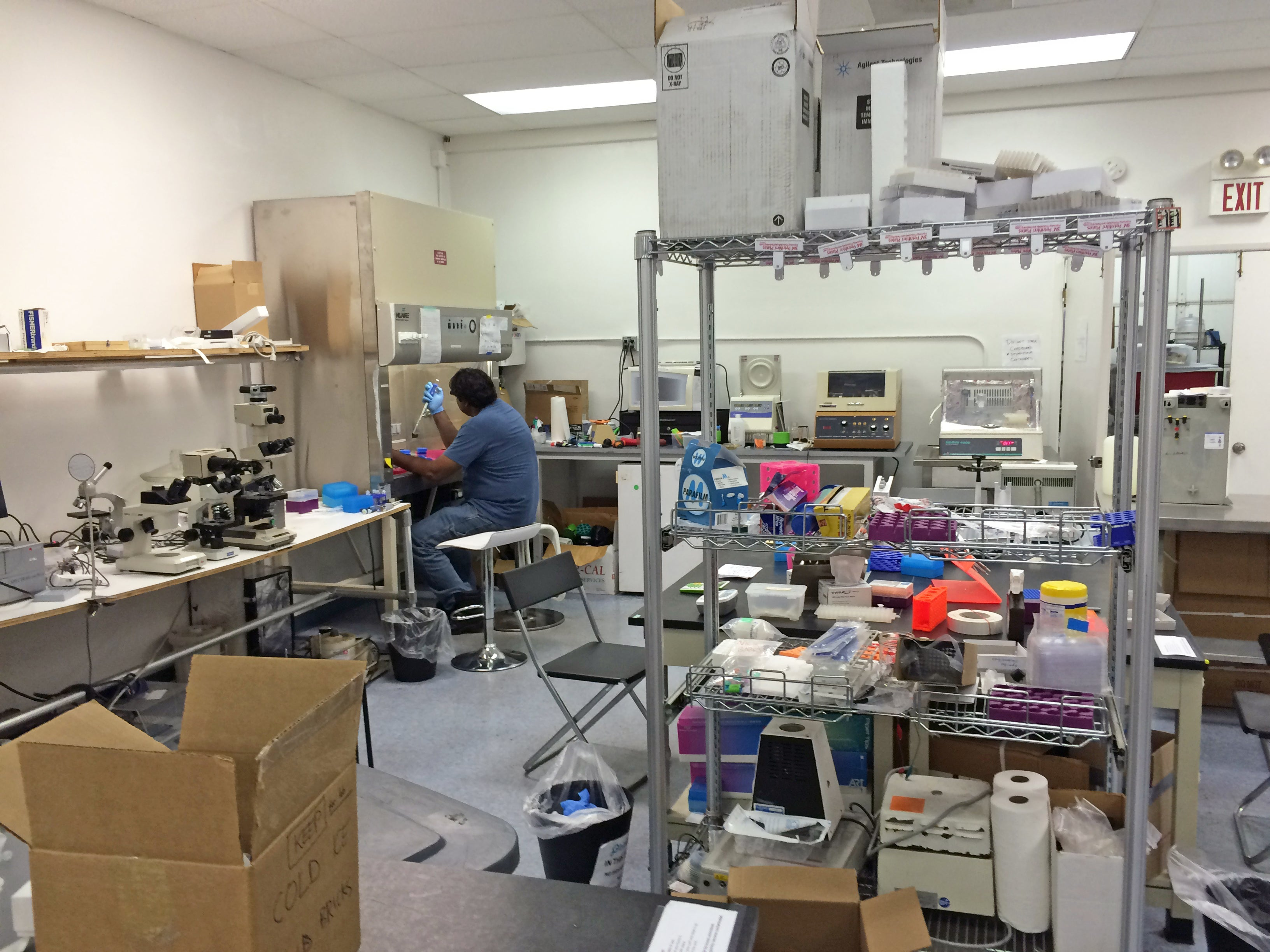 Mail Order Crispr Kits Allow Absolutely Anyone To Hack Dna It S Not Quite A Diy Echo Box For Dummies Scientist Johan Sosa Works With In Community Lab Biocurious Sunnyvale California Credit Annie Sneed