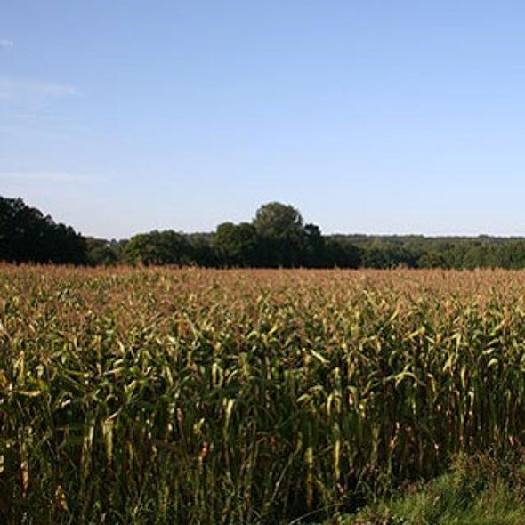 Obama Administration Prepares to Push Biofuels