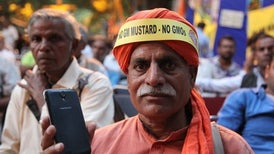 India's First GM Food Crop Held Up by Lawsuit