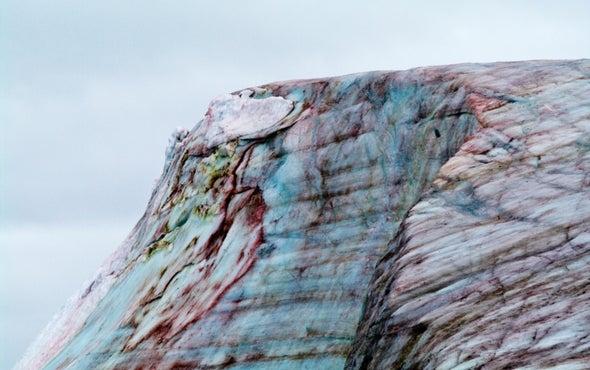 Algae May Be Melting the Greenland Ice Sheet