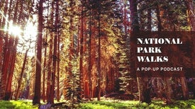 National Park Nature Walks, Episode 2: Sequoia Heights
