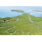 Mahajamba Bay