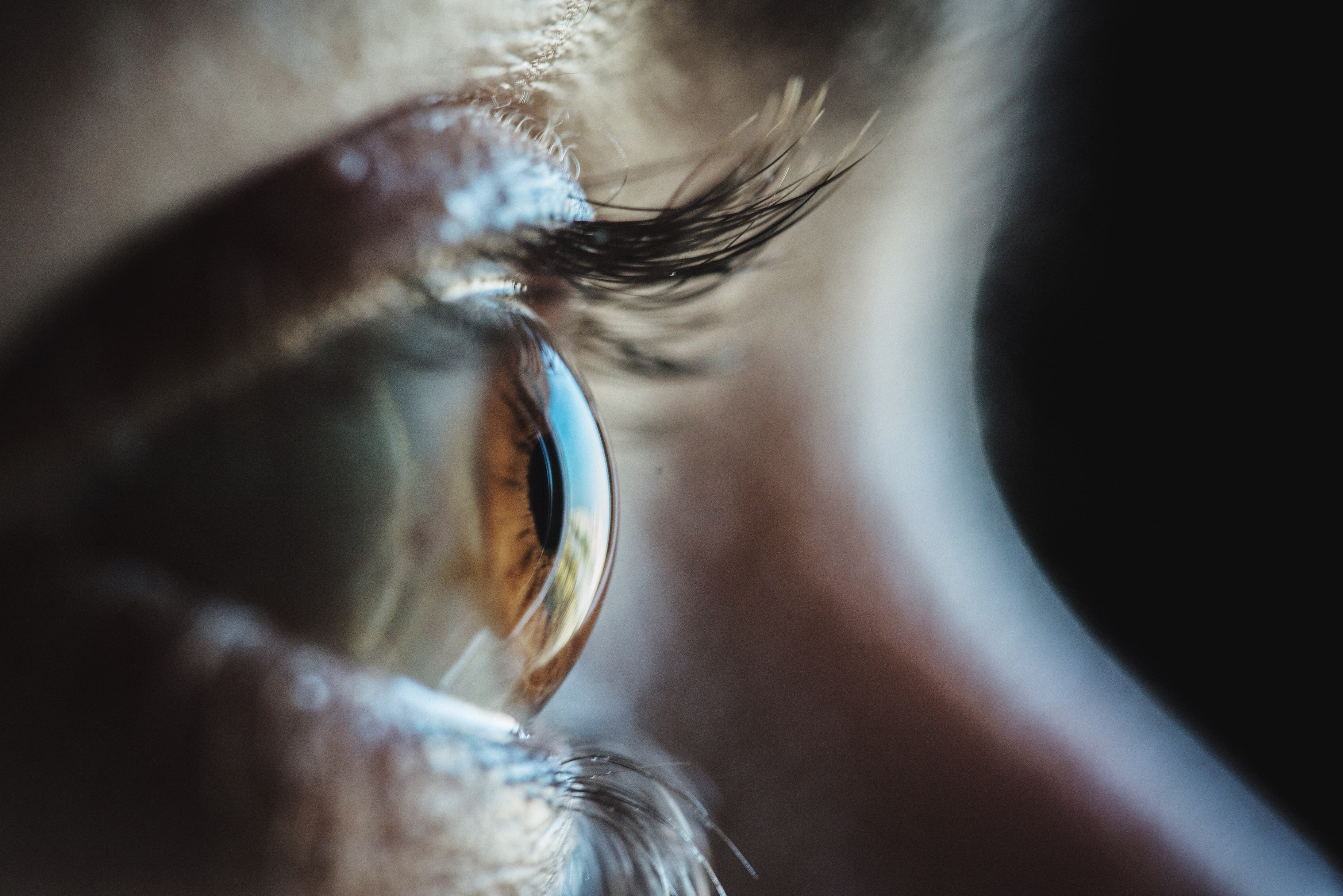 Injection of Light-Sensitive Proteins Restores Blind Man's Vision