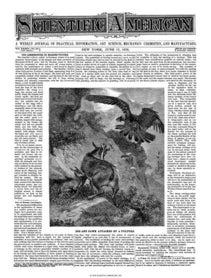 June 17, 1876