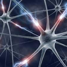 neuron synapse axon more energy efficient