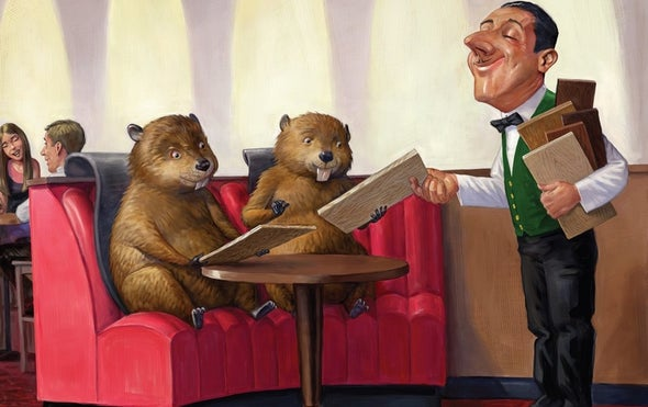 Beavers Made America Great, a New Book Explains
