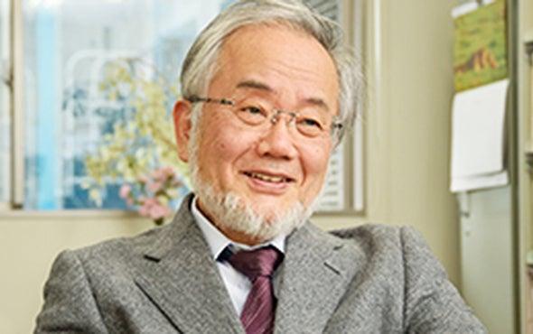 Nobel Prize Explainer: Autophagy