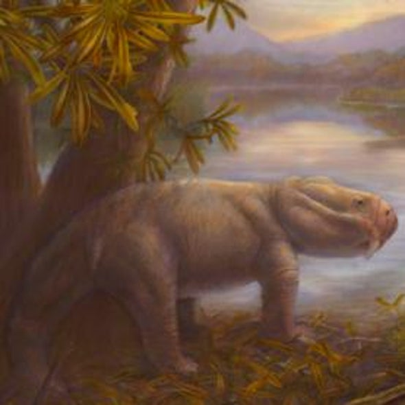 Dino Ancestors Boomed After Mass Extinction