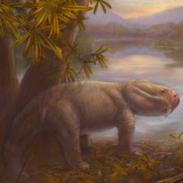 Dino Ancestors Boomed After Mass Extinction