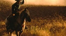 Carbon-Offset Cowboys Let Their Grass Grow