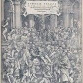 1543: <i>De humani corporis fabrica libri septem</i>, by Andreas Vesalius