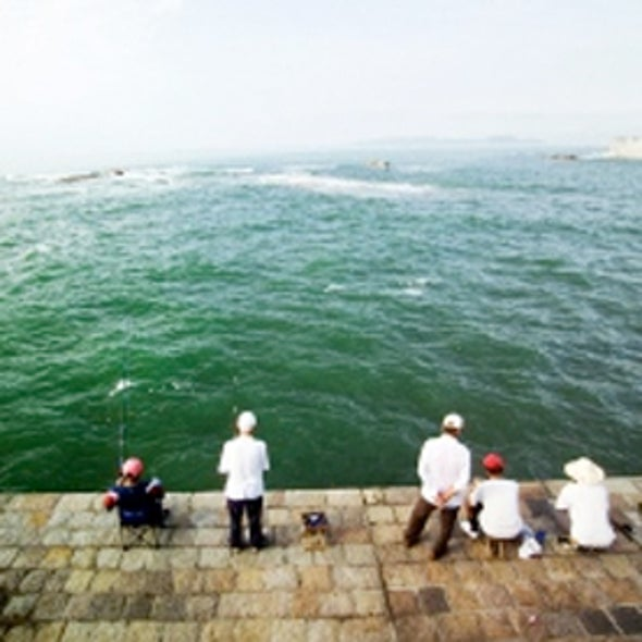 Chinese Survey Reveals Widespread Coastal Pollution