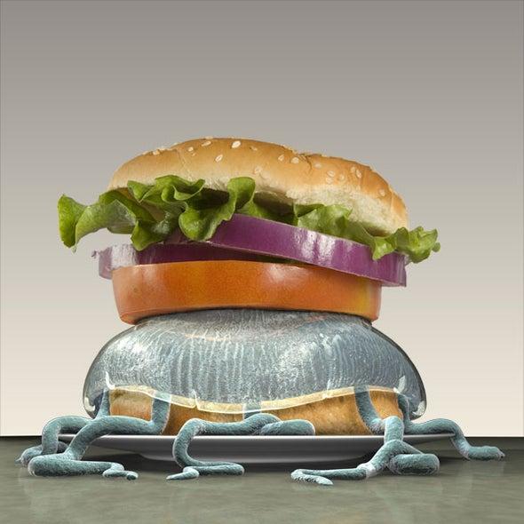 A Jellyfish Burger