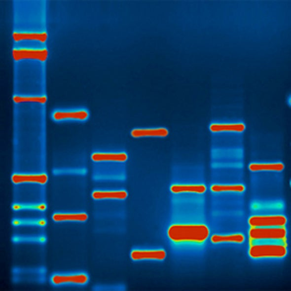 Pros and Cons of High-Tech DNA Forensics