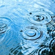 Sour Showers: Acid Rain Returns--This Time It Is Caused by Nitrogen Emissions