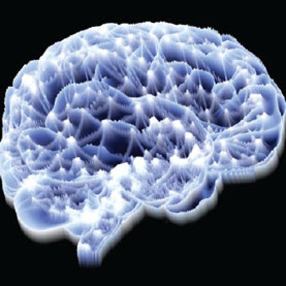 Neuroscientists Identify a Brain Signature of Pain