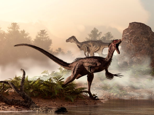 How Dinosaurs Shrank and Became Birds