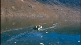 Lake Reveals Evidence of Pre-Incan Silver Industry