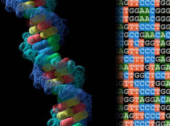 """First Life with """"Alien"""" DNA Created in Lab"""