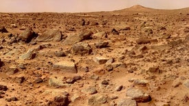"My Year on ""Mars"""