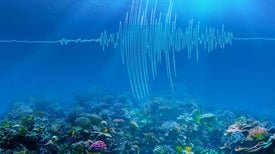 Undersea Earthquakes Reveal Sound Warming Info