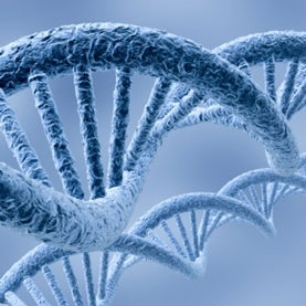 genome DNA