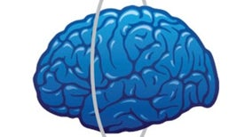 Brain Trainers: A Workout for the Mind