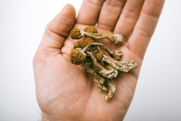 Psilocybin Therapy May Work as Well as Common Antidepressant