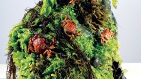 A Top Chef's Recipes for Eating Invasive Species