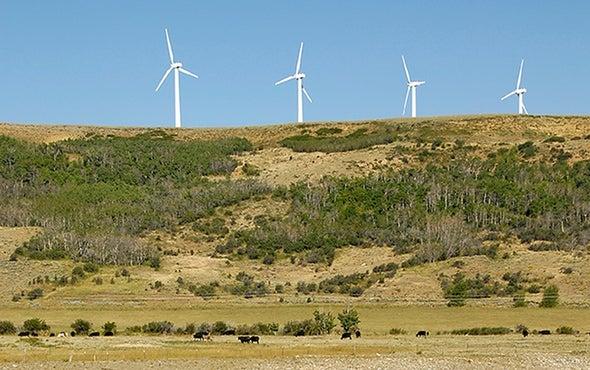 Red States Rank among Renewable Energy Leaders