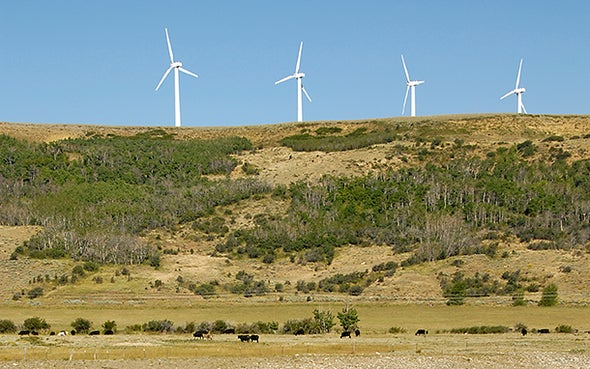 Red States Rank among Renewable Energy Leaders