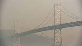 Strongest Evidence Yet Shows Air Pollution Kills