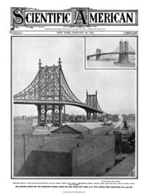 January 23, 1904
