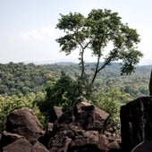 View of sacred grove from Pen Meta.