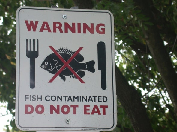 Fish Still Contaminated with Phased-Out Chemical