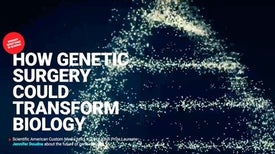 Interactive: How Genetic Surgery Could Transform Biology