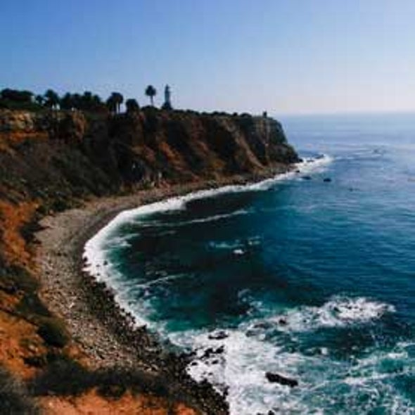 The Mystery of the Vanishing DDT in the Ocean Near Los Angeles