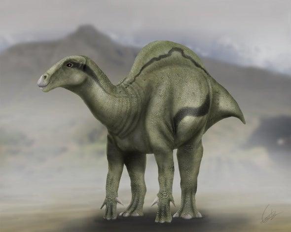 """Unusual """"Sail-Backed"""" Dinosaur Roamed Spain 125 Million Years Ago"""