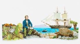 On the Origin of Darwin