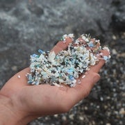 Microplastic scooped out of the shallow water at Kamilo Beach on the Big Island of Hawaii.