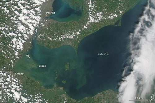 Lake Erie Algae Bloom Matches Climate Change Projections