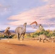 Big-Eyed Dinosaurs Foraged in Polar Australia's Darkness