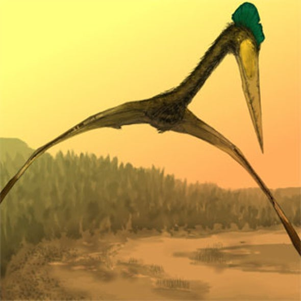 News Bytes of the Week: Flying dinosaur preferred to hoof it while hunting
