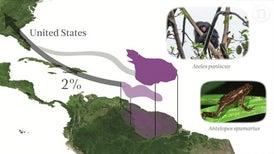 Where Trade Threatens Biodiversity
