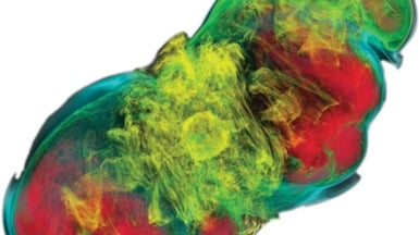 What a Failed Supernova Looks Like