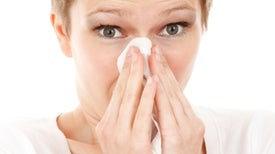 High Ozone and Pollen Levels Could Worsen Allergies