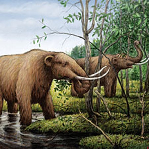 Lost Giants: Disparate Clues in the Mammoth Extinction Debate