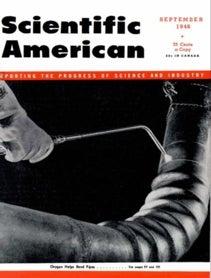 Scientific American Volume 175, Issue 3