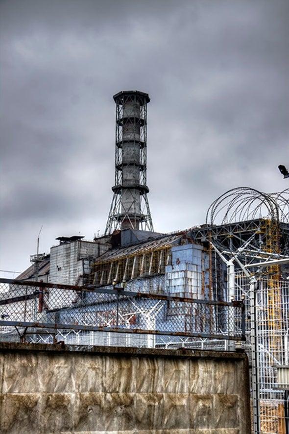 Chernobyl Wildlife Make a Comeback Despite Contamination