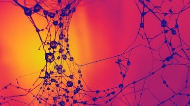 New Artificial Synapse Gets Closer to Mimicking Brain Connections - Scientific American